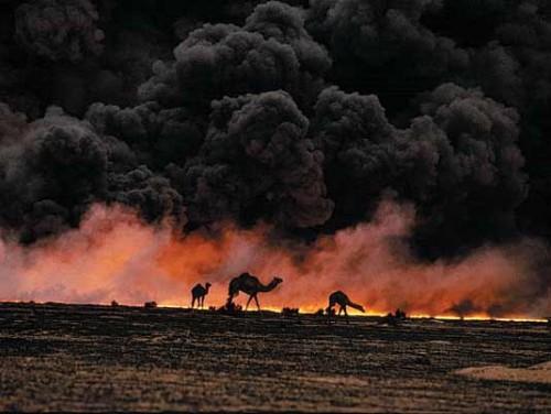وزارة العلوم والتكنلوجيا : حربا الخليج
