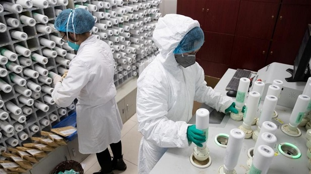 A new report fuels suspicions about the leakage of Corona from the Chinese laboratory of Wuhan