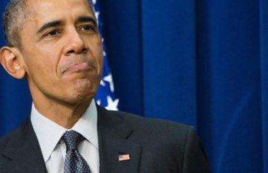 Senate candidate describes Obama as - Animal